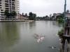 100년 만의 홍수로 물바다가 된 케랄라의 거리.