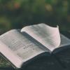 성경 성경책